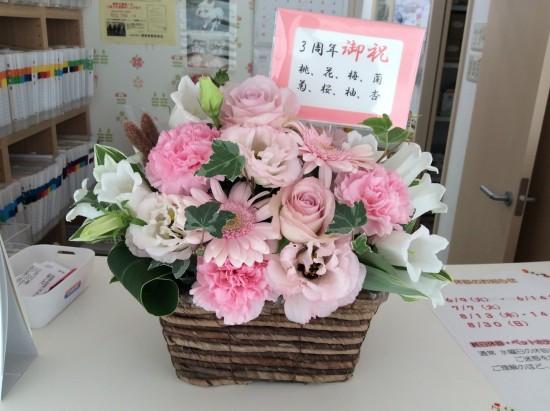 古泉さん花2015